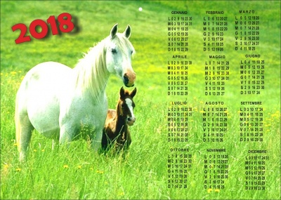 Calendar with an equestrian theme