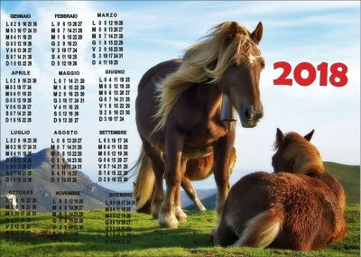 Calendar with an equestrian theme with